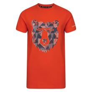 Dětské tričko Dare2b FRENZY oranžová