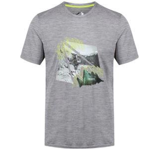 Pánské tričko Regatta FINGAL IV šedá