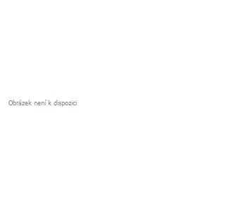 Dětská zimní bunda KILPI ORMES-JB oranžová